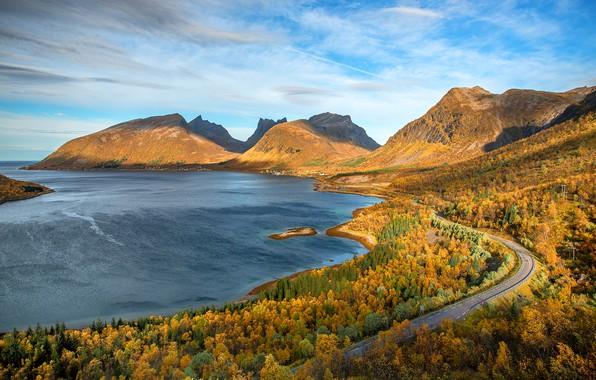 Картинка дорога, море, осень, лес, облака, свет, деревья, пейзаж, горы, синева, холмы, берег, вершины, вид, высота, …
