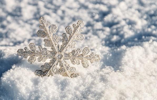 Картинка зима, снег, white, christmas, снежинка, winter, snow, snowflake