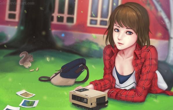 Картинка аниме, белка, арт, девочка