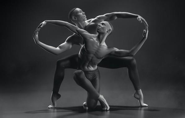 Картинка линии, танец, арт, грация, Infinity, творчество, балет, бесконечность, FOX3D ENTERTAINMENT