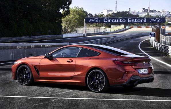 Картинка купе, BMW, Coupe, 2018, 8-Series, тёмно-оранжевый, M850i xDrive, 8er, G15, около трассы