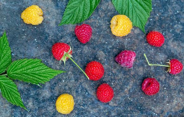 Картинка листья, малина, фон, ягода, боке