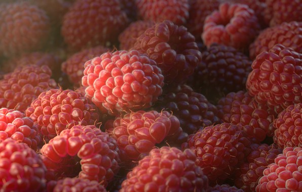 Картинка Макро, Art, Еда, Ягода, Малина, Raspberry, Рендеринг, Rendering, Macro, Food, Berry, Orlane Brouillet, by Orlane …