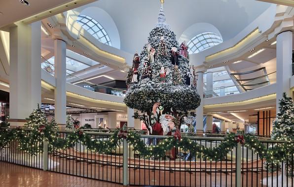Картинка фото, Забор, Ветки, Новый год, Елка, Дед Мороз, Гирлянда