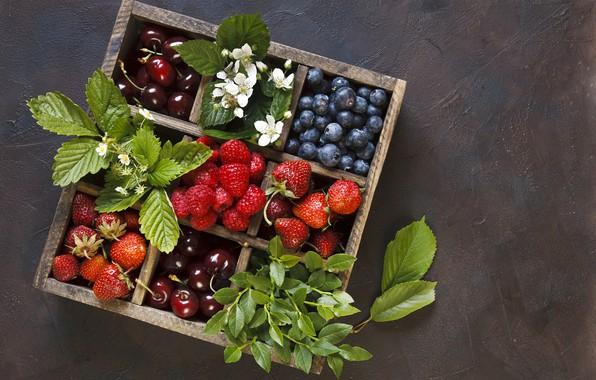 Картинка цветы, ягоды, малина, черника