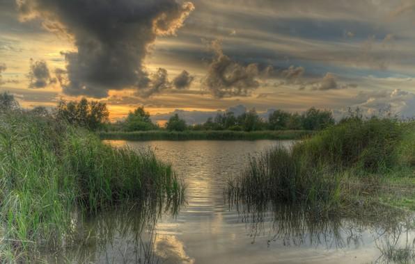 Картинка трава, река, пасмурно, вечер