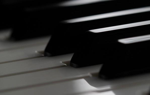 Картинка макро, клавиши, пианино