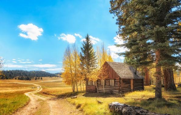 Картинка дорога, поле, осень, лес, трава, облака, деревья, пейзаж, природа, дом, настроение, поляна, листва, избушка, красота, …