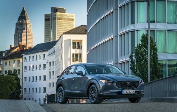 Картинка Mazda, Worldwide, 2019, CX-30