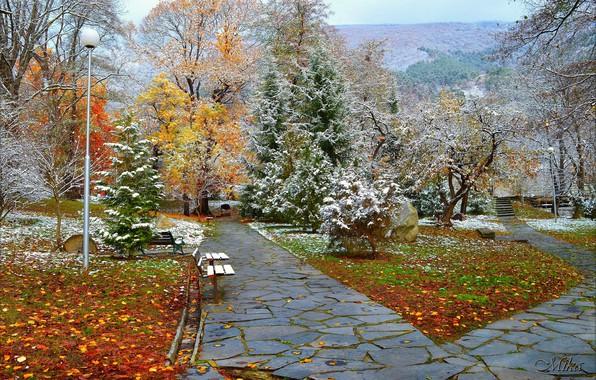 Картинка Зима, Снег, Парк, Winter, Park, Snow, Trees, Скамейки