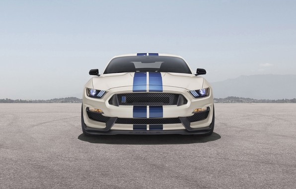 Картинка Mustang, Shelby, ford, Ford Mustang Shelby GT350, gt350