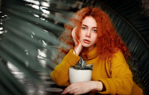 Картинка цветок, взгляд, девушка, поза, модель, портрет, растения, макияж, прическа, горшок, сидит, рыжеволосая, в жёлтом, свитер, …