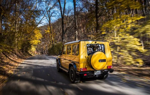 Картинка осень, Mercedes-Benz, вид сзади, AMG, G-Class, Gelandewagen, G63, 2017, Colour Edition