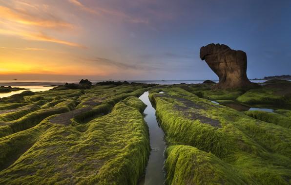 Картинка море, небо, облака, водоросли, пейзаж, закат, природа, скала, синева, камни, берег, побережье, камень