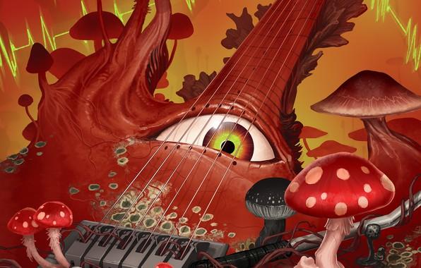 Картинка Music, Infected Mushroom, Cover, Monstercat, Guitarmass