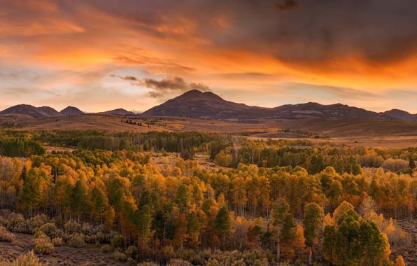 Картинка осень, лес, пейзаж, закат, горы, природа, красота, вечер, панорама