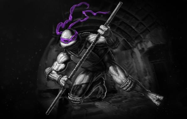 Картинка Ниндзя, Черепашки-ниндзя, TMNT, Donatello, Донателло, Teenage Mutant Ninja Turtles, Черепашки, Concept Art, Characters, NOIR TMNT, …