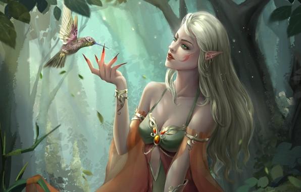 Картинка лес, взгляд, фэнтези, арт, профиль, эльфийка, птичка