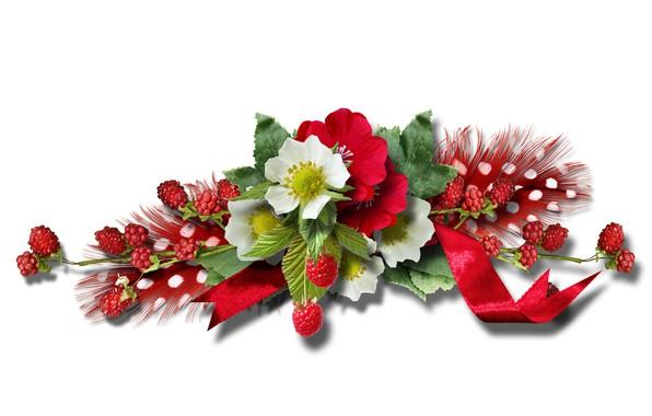 Картинка малина, перья, лента, Цветки, веточки