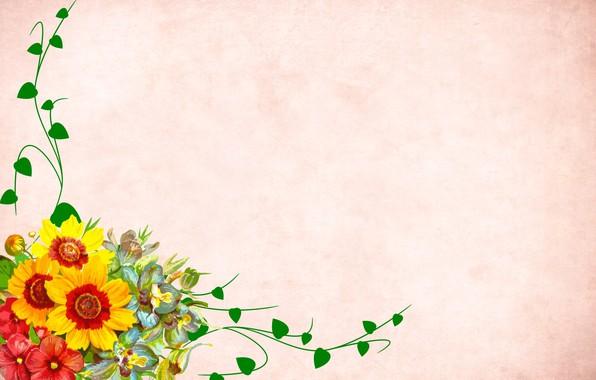 Картинка цветы, фон, открытка, шаблон, заготовка