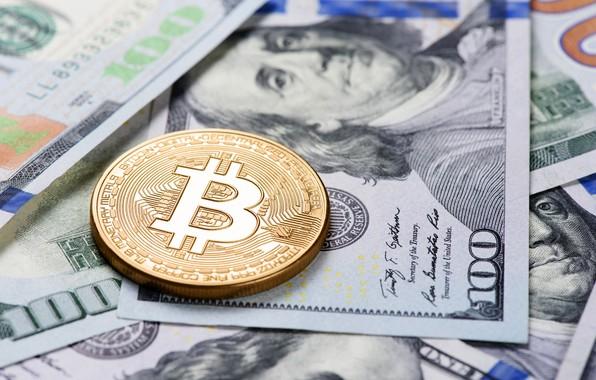 Картинка размытие, доллары, купюры, франклин, dollars, bitcoin, биткоин