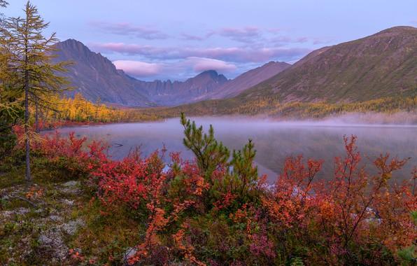 Картинка осень, облака, деревья, пейзаж, горы, природа, туман, рассвет, берег, утро, кусты, Владимир Рябков, Колыма, озеро …