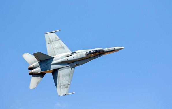 Картинка истребитель, полёт, CF-188 Hornet