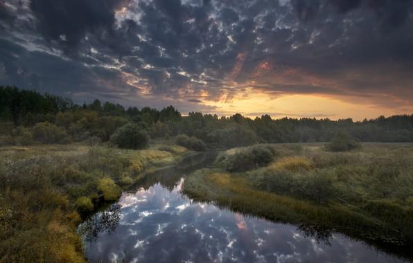 Картинка осень, небо, пейзаж, тучи, природа, рассвет, утро, травы, леса, берега, Архангельск, речушка, Пуя