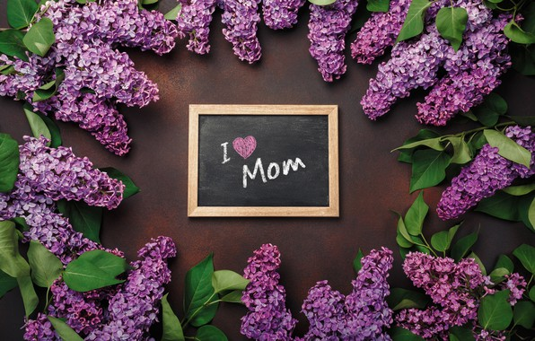 Картинка цветы, love, wood, flowers, сирень, romantic, letter, spring, purple, lilac, mother's Day