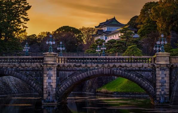 Картинка деревья, пейзаж, мост, река, здание, вечер, Япония, Токио, фонари, дворец