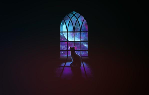 Картинка Минимализм, Звезды, Кошка, Космос, Кот, Окно, Фон, Арт
