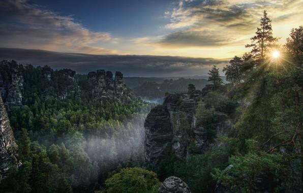 Картинка лес, солнце, лучи, пейзаж, закат, горы, природа, скалы
