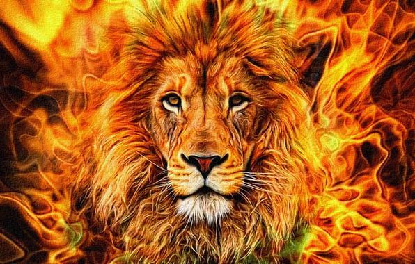 Картинка абстракция, рендеринг, пламя, рисунок, портрет, грива, царь зверей, холст, обои на рабочий стол, акрил, уверенный …