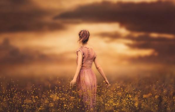 Картинка небо, девушка, закат, цветы, платье, луг
