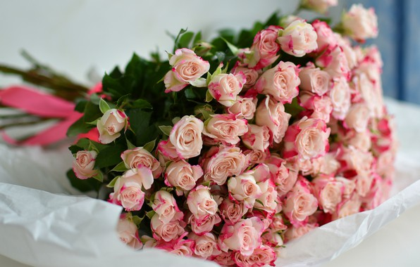 Картинка цветы, бумага, фон, розы, букет, светлый, лежит, розовые, бантик, много, розочки, букет из роз