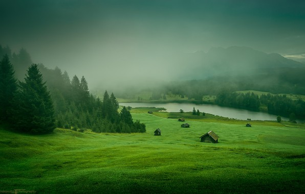 Картинка grass, forest, Nature, river, trees, landscape, mountains, houses, meadow, mist