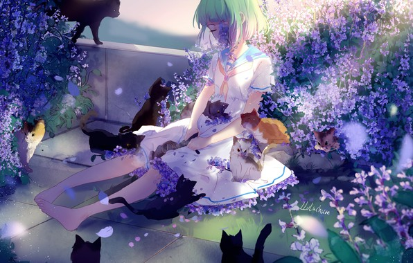 Картинка грусть, кошки, девочка, котята, зеленые волосы, сиреневые цветочки, босая, матроска, lluluchwan