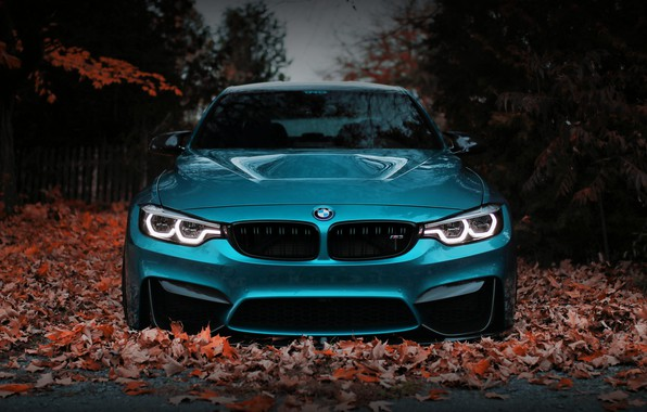 Картинка BMW, Blue, Front, Autumn, Face, F80, Sight