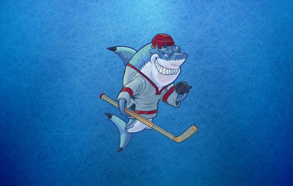 Картинка Минимализм, Спорт, Лого, Акула, Фон, Хоккей, Concept Art, Шайба, Клюшка, Characters, Экипировка, Sharks Wearing, Christopher …