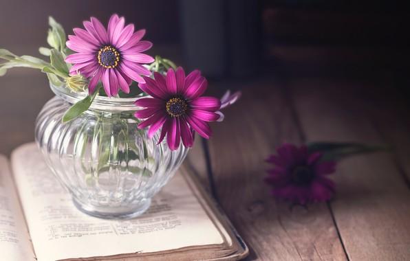 Картинка стекло, свет, цветы, стол, фон, темный, доски, книга, деревянный, розовые, натюрморт, страницы, букетик, сиреневые, стеклянная, …