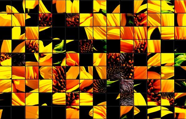 Картинка стекло, подсолнухи, мозаика, плитка, colors, текстура, абстрактный рисунок, фон •, витражные стекла