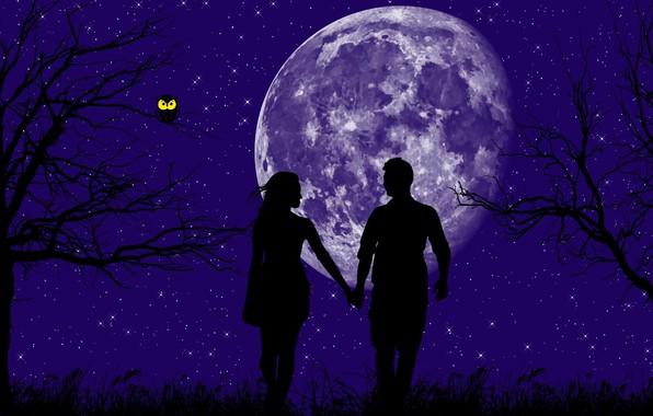 Картинка звезды, деревья, любовь, сова, планета, love, волшебная ночь, мужчина и женщина, взвшись за руки, в …