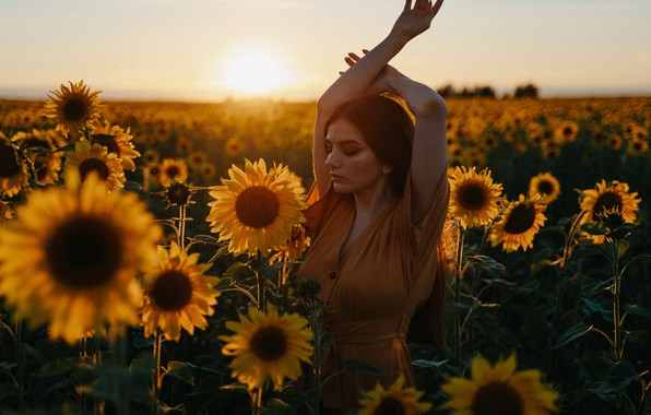 Картинка поле, лето, девушка, подсолнухи, закат, поза, настроение, руки, Алексей Челноков, Лиза Челнокова