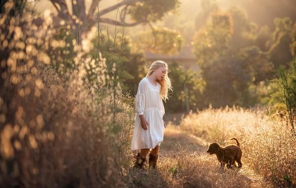 Картинка лето, собака, девочка