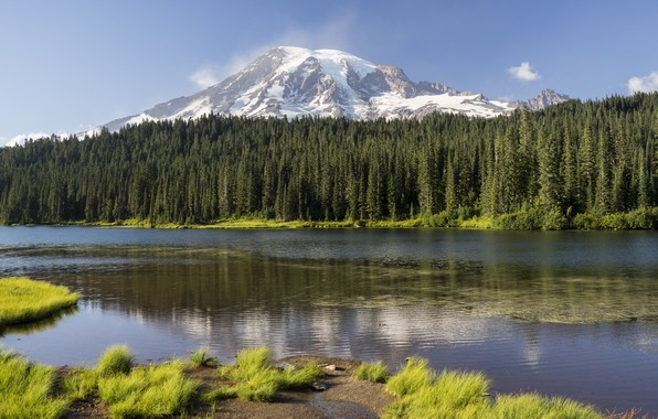 Картинка лес, небо, пейзаж, горы, природа, озеро, красота