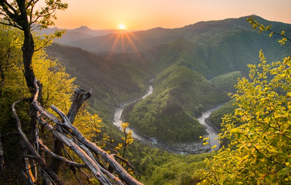 Картинка осень, солнце, горы, туман, река, холмы, листва, высота, дымка