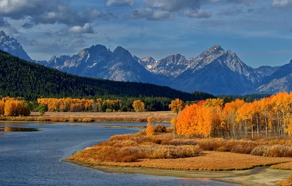 Картинка осень, лес, небо, солнце, облака, деревья, горы, река, США, жёлтые, Grand Teton National Park