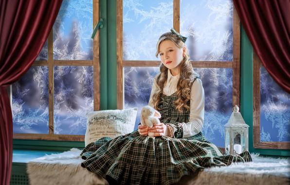 Картинка игрушка, кролик, окно, мороз, девочка, фонарь, подушка, зайка, локоны, сарафан, на подоконнике, Диана Липкина