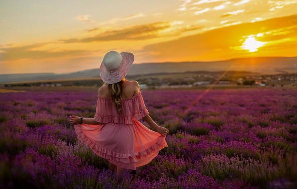 Картинка поле, лето, девушка, закат, цветы, природа, фото, модель, волосы, спина, вечер, шляпа, платье, Виталий Скитаев