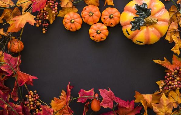 Картинка осень, листья, фон, дерево, colorful, Halloween, тыква, клен, wood, background, autumn, leaves, осенние, pumpkin, maple